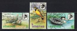 LESOTHO - 1981 - Rock Pigeons - Bokmakierie - Red-billed Teal - USATI - Lesotho (1966-...)