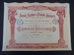 FRANCE - PARIS 1919 - STE MARITIME DE PRODUITS CHIMIQUES - ACTION DE 100 FRS - DECO - IMPRIMERIE RICHARD - Shareholdings