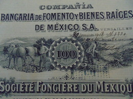 MEXIQUE - MEXICO 1910 - BANCARIA DE FOMENTO YBIENES RAIGES DE MEXICO - ACTION DE 100 PIASTRES - BELLE DECO - Shareholdings