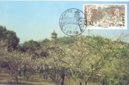 CINA TAIHU  MAXIMUM 1995    (GENN200680) - 1949 - ... République Populaire