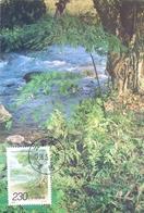 CINA SOUTHERN CHINA MAXIMUM POST CARD  1995    (GENN200688) - 1949 - ... République Populaire