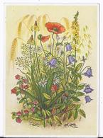 """DT- Reich (001980) Postkarte Reichsgartenschau Stuttgart 1939 """"Feldblumen"""" Blanco Gestempelt Mit SST Am 15.6.1939 - Briefe U. Dokumente"""