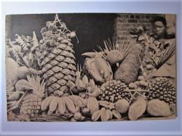 CONGO BELGE - KISANTU - Jardin D'essais - 1927 - Congo Belge - Autres