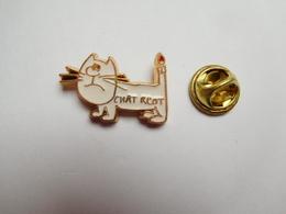 Superbe Pin's En Relief , Chat , Chât Rcot , Charcot - Dieren