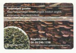 Hungary, Lingzhi Mushroom And Grifoloa Frondosa,  2015. - Kalenders