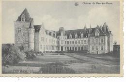 HAM-SUR-HEURE  Le  Château. - Ham-sur-Heure-Nalinnes