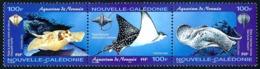 NOUV.-CALEDONIE 2004 - Yv. 914 915 Et 916 **   Faciale= 2,51 EUR - Poisson Raie (3 Val. Se Tenant)  ..Réf.NCE25559 - New Caledonia