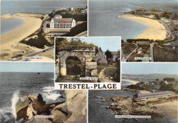 22-TRESTEL-N°276-A/0219 - Frankrijk
