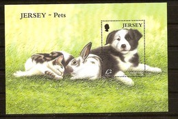 Jersey 2003  Yvertn° Bloc 50 *** MNH Cote 10 Euro Faune  Chiens Honden Dogs - Jersey