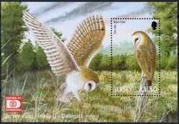 Jersey 2001 Yvertn° Bloc 40 *** MNH Cote 7,50 Euro Faune Rapaces Oiseaux Vogels Birds Hafnia 2001 - Jersey