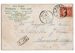 Workum Grootrond Meppel - 1905 - Poststempel