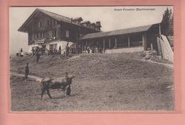 OLD POSTCARD - SWITZERLAND - SCHWEIZ - SUISSE -    AGRICULTURE - HOTEL-PENSION OESCHINENSEE - BE Berne