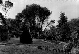 B64164 Cpm Lamalou Les Bains, Le Parc De L'Usclade - Lamalou Les Bains