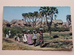 Sur Le Chemin De La Fontaine : L'Afrique En Couleurs ( 3016 > HOA-QUI ) Anno 19?? ( Voir Photo ) ! - Cartes Postales