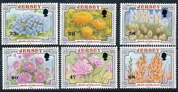 Jersey 2002 Yvertn° 1039-44 *** MNH Cote 12,50 Euro  Flore Bataille De Fleurs Bloemen - Jersey