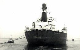 FINA CANADA DUNKERQUE +-14*9 Cm NAVIRE BATEAU BARCO SHIP - Schiffe