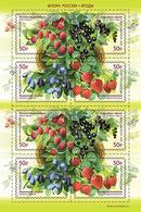 Russia  2020 Berries Sheet MNH - 1992-.... Federation