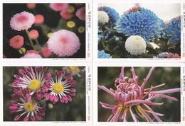 China 2016 China Flower Chrysanthemums Postal Cards - 1949 - ... République Populaire