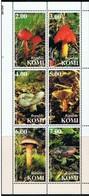 KOMI -  Bloc De 6 Champignons - Champignons