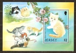 Jersey 2002  Yvertn° Bloc 43 *** MNH Cote 10 Euro Faune  Chats Katten Cats - Jersey