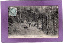 88 SENONES Sur Le Sentier Picot - Senones