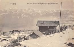 SALEVE.-S TATION TREIZE ARBRE CHAINE DU MONTBLANC - GE Ginevra