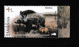 Moldavie. Moldova.. Sanglier. Wild Boar - Otros