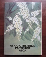 MEDICINAL PLANTS OF THE FOREST. Set Of 32 Postcards In Folder - USSR, 1986 - Medicinal Plants