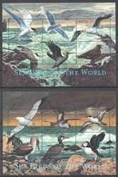 PK150 SIERRA LEONE FAUNA SEA BIRDS OF THE WORLD 2KB MNH - Marine Web-footed Birds