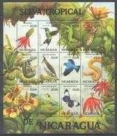 PK203 1993 NICARAGUA FAUNA BIRDS SELVA TROPICAL DE NICARAGUA 1SH MNH - Sellos