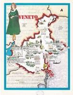 VENETO - ENOGRAFIA REGIONALE DEI VINI D.O.C - Mappe