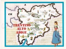 TRENTINO ALTO ADIGE - ENOGRAFIA REGIONALE DEI VINI D.O.C - Mappe