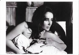 Belle Photo 20 X 29 Cm - Portrait De Liz Taylor, Actrice - Copyright Sunset Boulevard Corbis - Personalità