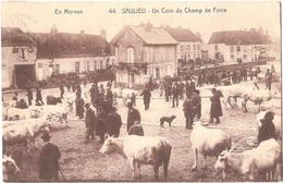 Dépt 21 - SAULIEU - Un Coin Du Champ De Foire - (A. Duciel, édit., Saulieu, N° 44) - FOIRE AUX BESTIAUX - Saulieu