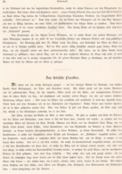 366 Steiermark Voitsberg Krems Hollenegg Artikel Mit Ca. 9 Bildern 1880 !! - Revues & Journaux