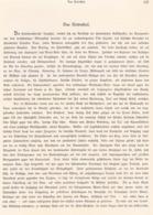 374 Kärnten Rosental Rosegg 1 Artikel Mit Ca.3 Bildern 1880 !! - Revues & Journaux