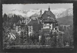 AK 0409  Semmering - Südbahnhotel Gegen Rax / Verlag Ledermann Um 1957 - Semmering