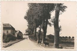 C.P.S.M - FRASNE (Doubs) - Voyagée 1948 - Frankreich