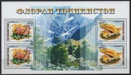 Tajikistan - Tadjikistan (2019) - Block - Overprint  /  Setas - Pilze - Mushrooms - Champignons - Fungi - Funghi - Hongos