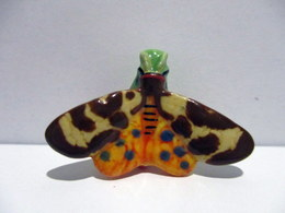 Fève Brillante - Papillon - Ecaille Martre - Animali