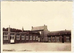 SCHAFFEN-BANKLAAR - Klooster En School Van De Zuster Der  Christelijke Scholen - Diest