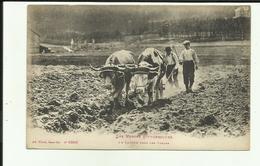 88 - Vosges - Travaux Des Champs - Le Labour - Attelage De Boeufs - - Frankreich