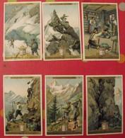 3 Chromo Liebig : Une Excursion Dans Les Alpes. 1897. S 517. édition Française. + 3 Gratuites - Liebig