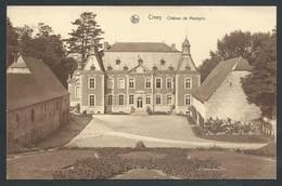 +++ CPA - CINEY - Château De MASOGNE - Nels  // - Ciney
