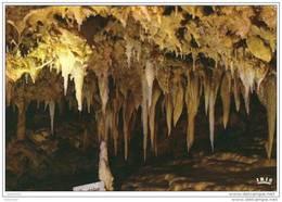 CPM .Les Eysies Grotte Du Grand Roc.ed:Cap Théojac. - Frankrijk