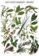 Les Fines Herbes (2 Scans) - Bloemen, Planten & Bomen