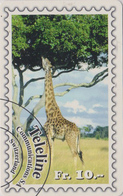 Télécarte Suisse Teleline - Série ANIMAL & TIMBRE - GIRAFE - GIRAFFE & STAMP Phonecard  - 164 - Postzegels & Munten