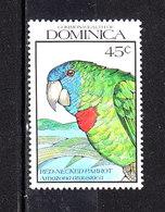 Dominica  - 1990. Pappagallo. Parrot. MNH - Papegaaien, Parkieten