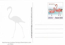 Postcard Dutch Caribic With Birds, Flamingos, Unused - Oiseaux