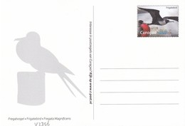 Postcard Dutch Curacao With Bird, Unused - Oiseaux